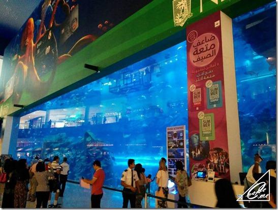 dubaimall_aquarium