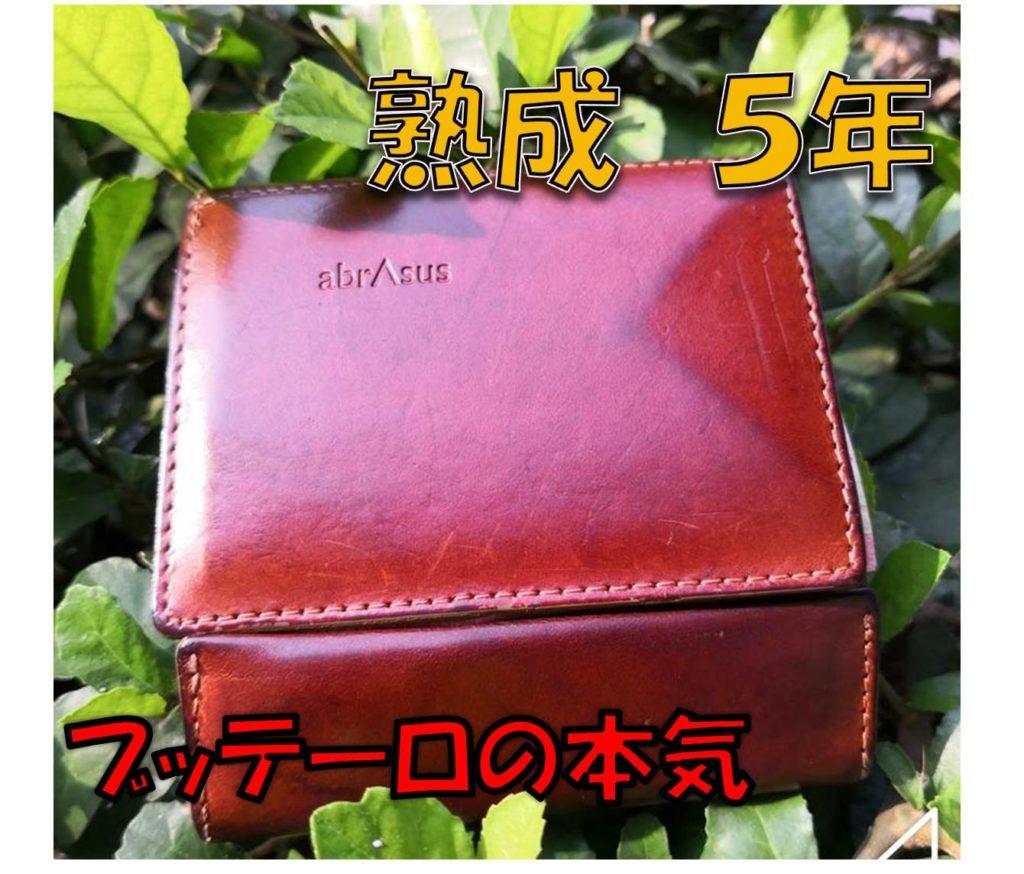 【熟成5年】薄い財布ブッテーロ本革レザー驚異のエイジング
