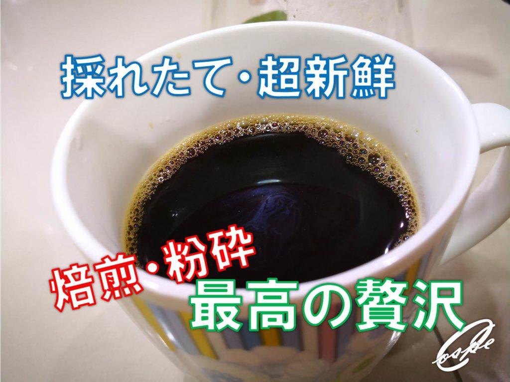 【タイ王国】採れたて超新鮮なコーヒー生豆を自分で焙煎して飲む