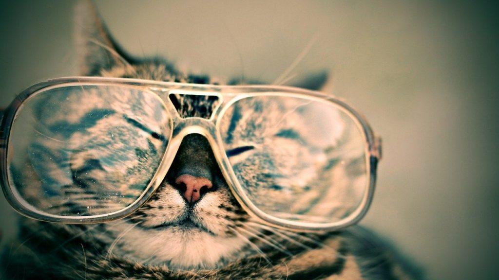僕がコンタクトをやめてメガネにした5つの理由